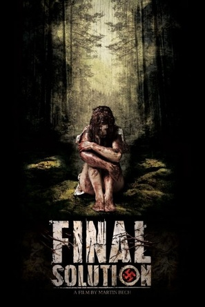 The Final Solution - Movie Poster (thumbnail)