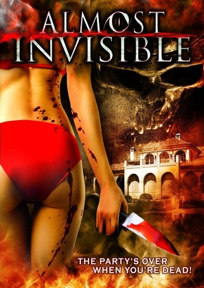 Almost Invisible - DVD movie cover (thumbnail)