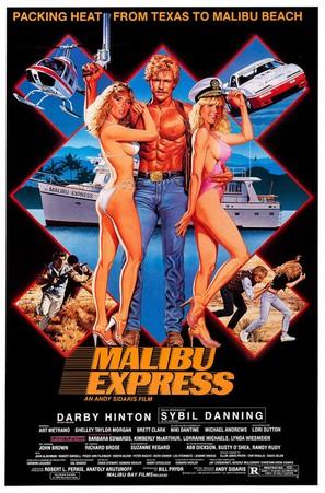 Malibu Express - Movie Poster (thumbnail)
