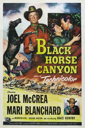Black Horse Canyon - Movie Poster (thumbnail)