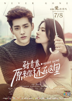 Never Gone - Chinese Movie Poster (thumbnail)