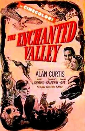 The Enchanted Valley - Movie Poster (thumbnail)