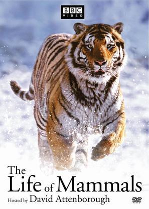 """The Life of Mammals"" - poster (thumbnail)"