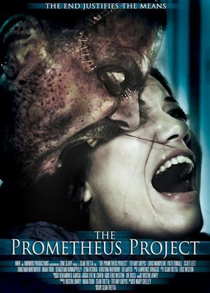 The Prometheus Project - Movie Poster (thumbnail)