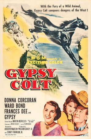 Gypsy Colt - Movie Poster (thumbnail)