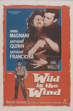 Wild Is the Wind - Movie Poster (thumbnail)