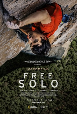 2018 Movie Reviews Free Solo Green Book Hereditary And More