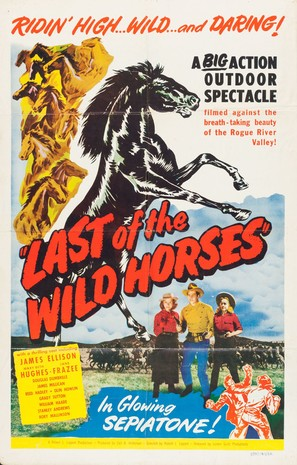 Last of the Wild Horses - Movie Poster (thumbnail)