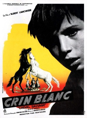 Crin blanc: Le cheval sauvage - French Movie Poster (thumbnail)