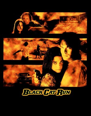 Black Cat Run