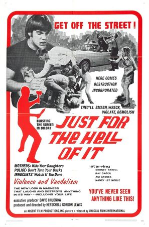 Just for the Hell of It - Movie Poster (thumbnail)