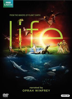 """Life"" - Movie Cover (thumbnail)"