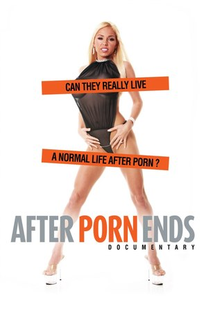 After Porn Ends - DVD movie cover (thumbnail)