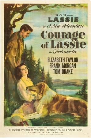 Courage of Lassie - Movie Poster (thumbnail)
