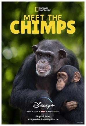 """Meet the Chimps"""