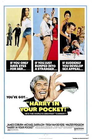 Harry in Your Pocket - Movie Poster (thumbnail)
