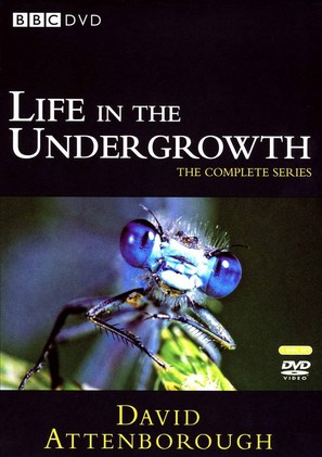 """Life in the Undergrowth"" - DVD cover (thumbnail)"