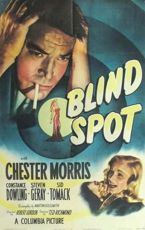 Blind Spot - Movie Poster (thumbnail)