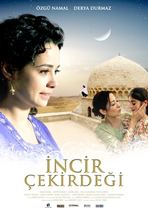 Incir çekirdegi - Turkish Movie Poster (thumbnail)