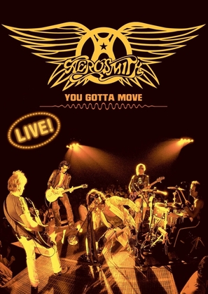 Aerosmith: You Gotta Move - DVD movie cover (thumbnail)