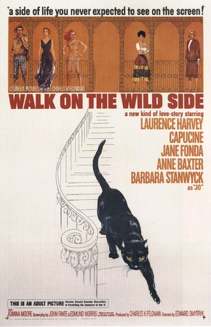 Walk on the Wild Side - Movie Poster (thumbnail)