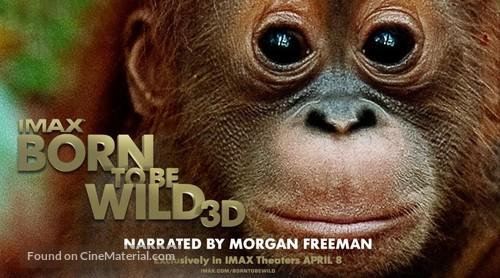 born to be wild 2011 full movie