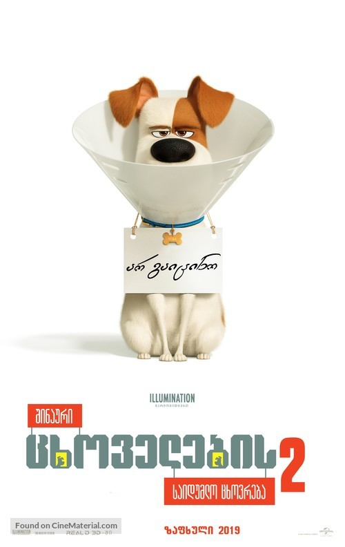 The Secret Life of Pets 2 - Georgian Movie Poster