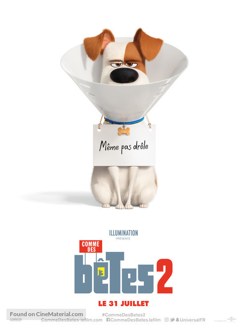 The Secret Life of Pets 2 - French Movie Poster