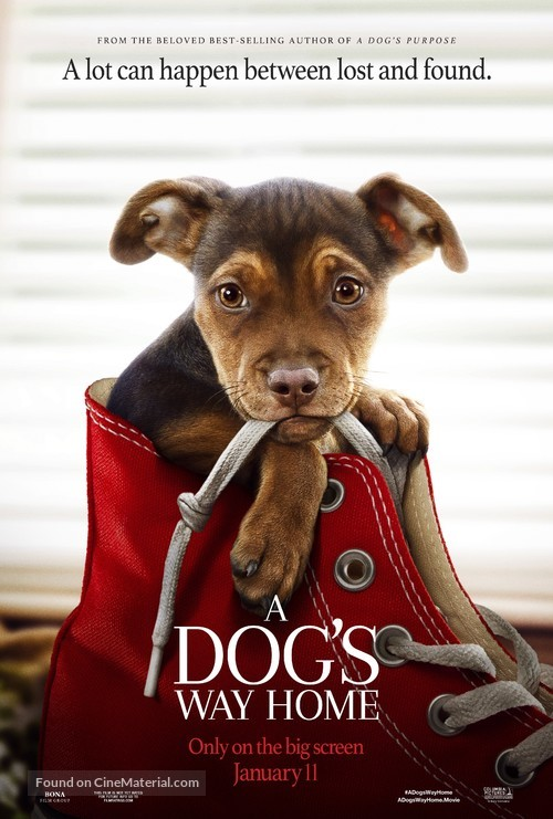 A Dog's Way Home - Movie Poster