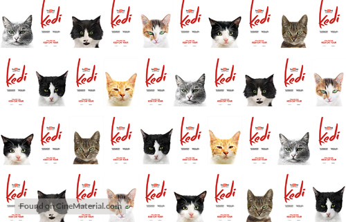 Kedi - Movie Poster