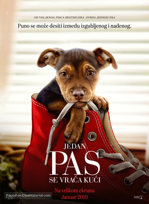A Dog's Way Home - Serbian Movie Poster