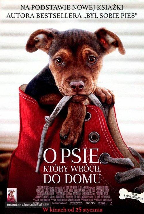 A Dog's Way Home - Polish Movie Poster