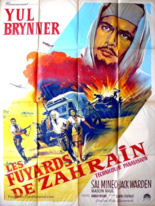 Escape from Zahrain - French Movie Poster