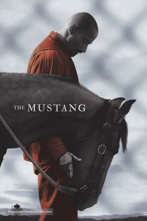 The Mustang - Movie Cover