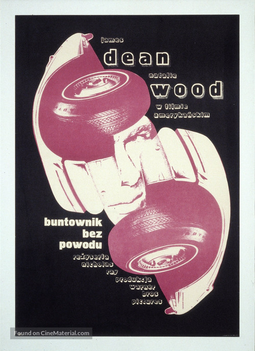 Rebel Without a Cause - Polish Movie Poster