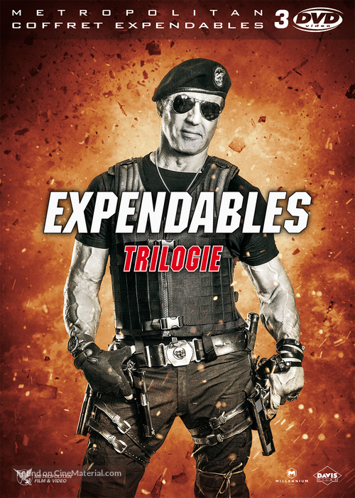 The Expendables 3 - French DVD movie cover