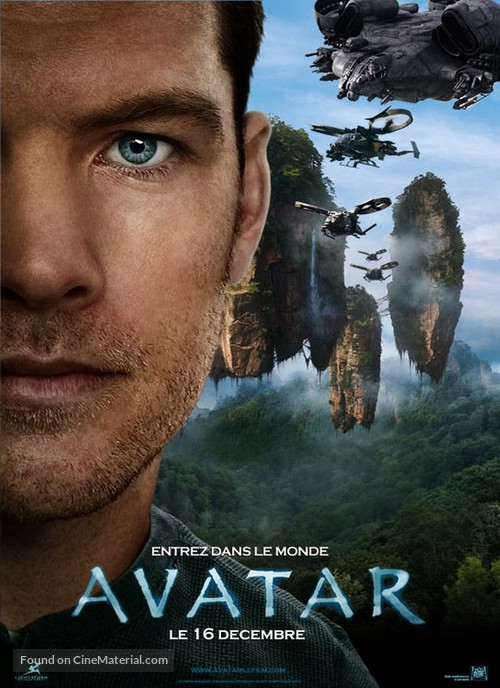 avatar french movie poster