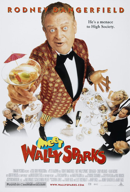 Meet Wally Sparks - poster