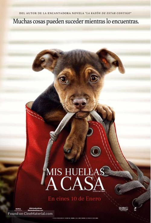 A Dog's Way Home - Colombian Movie Poster