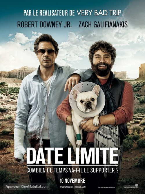 Due Date - French Movie Poster