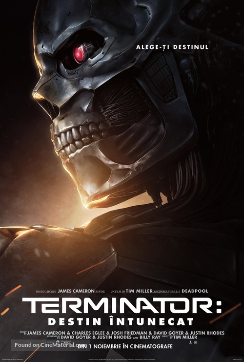 Terminator: Dark Fate - Romanian Movie Poster