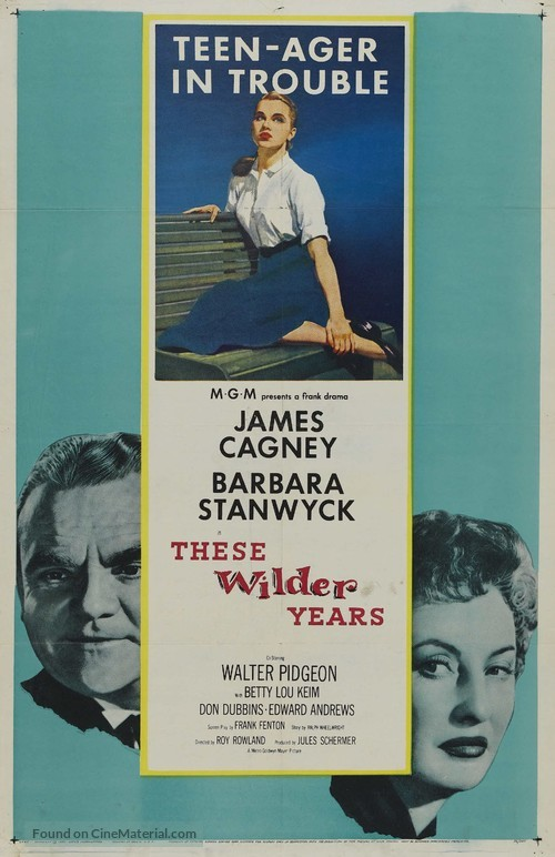 These Wilder Years - Movie Poster