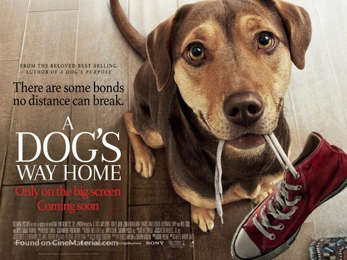 A Dog's Way Home - British Movie Poster