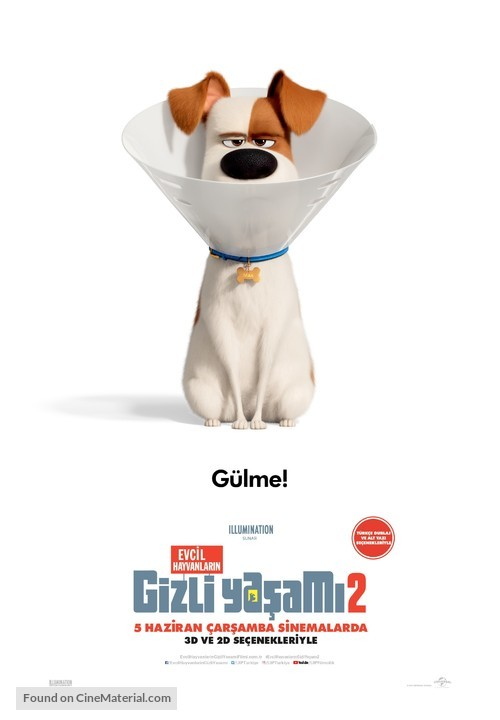 The Secret Life of Pets 2 - Turkish Movie Poster